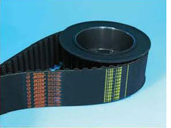 Power V Belt